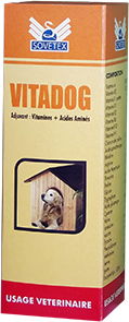 vitadog2